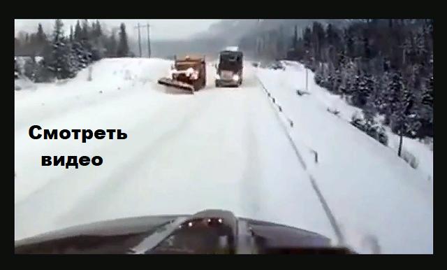 Реакция на встречку русского и американца. (видео)