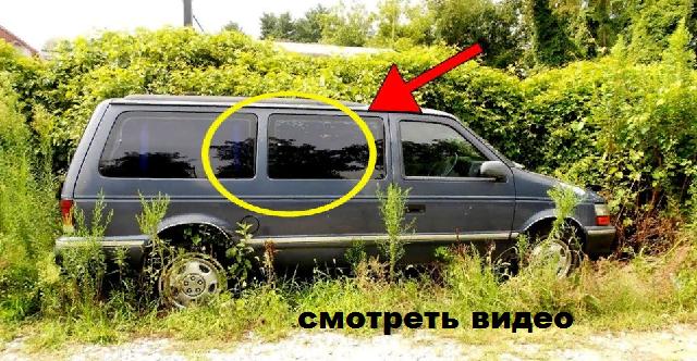 Парень остановился на дороге, чтобы помочь, затем он увидел в фургоне...